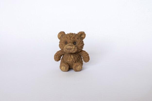 Urso pardo em branco