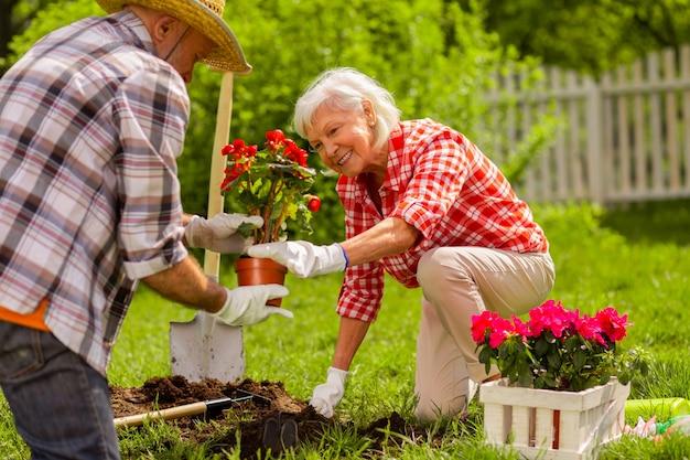 Usando luvas brancas. marido e mulher aposentados usando luvas brancas plantando flores perto de casa juntos