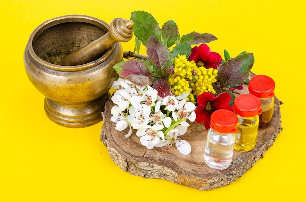 Uso de plantas medicinais na medicina alternativa. foto do estúdio.
