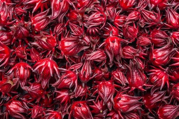 Uso roselle vermelho fresco para o conceito de erva ou comida