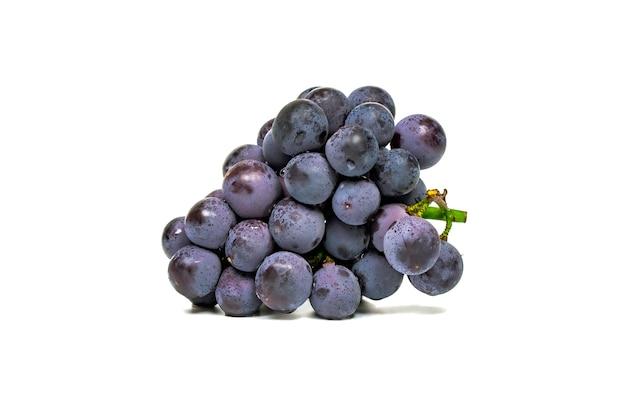 Uva azul escura fruta isolada no branco