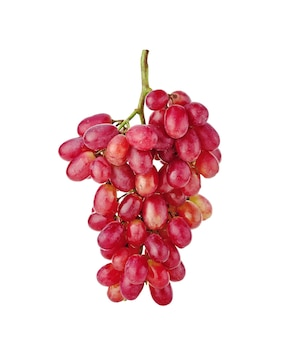 Uva vermelha isolada no branco isolada