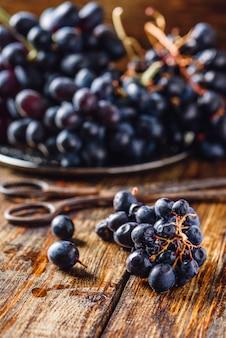 Uvas de videira azul e tesoura enferrujada