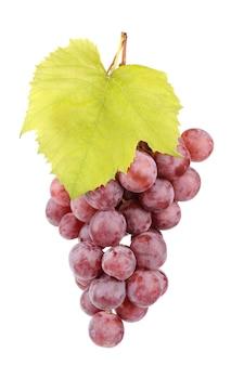 Uvas vermelhas frescas com folhas isoladas em branco