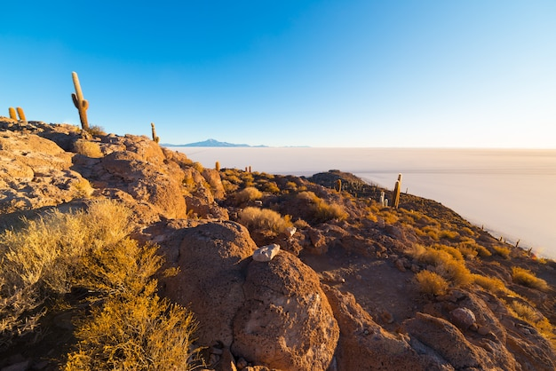 Uyuni salt flat no nascer do sol, destino de viagem na bolívia e na américa do sul.