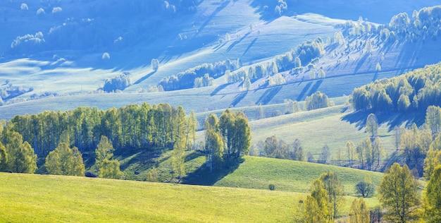 Vale da montanha em uma manhã de primavera, florestas verdes e prados