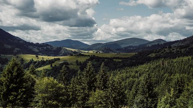Vale da montanha. paisagem natural de verão. fundo do banner horizontal