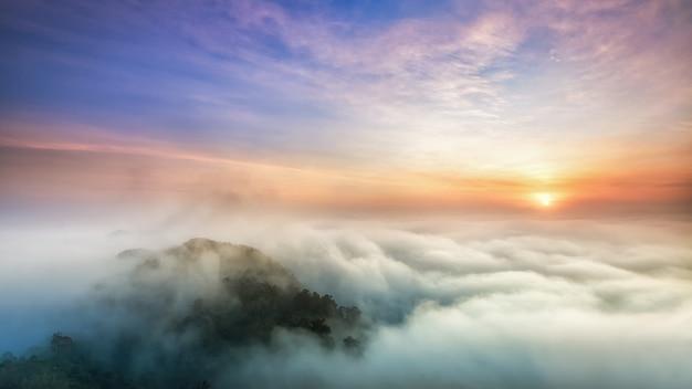 Vale da névoa
