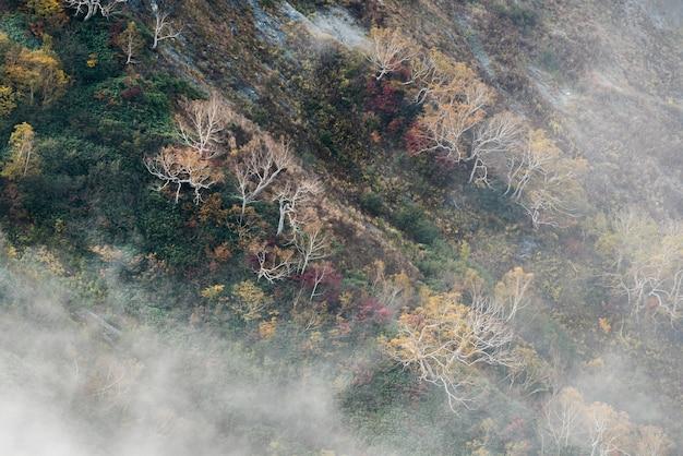 Vale de hakuba outono nagano japão