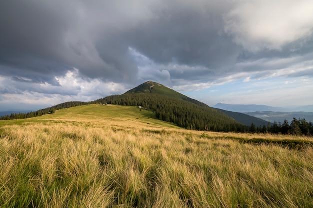 Vale gramado verde em montanhas arborizadas distantes.