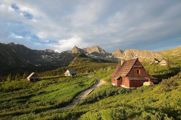 Vale nas montanhas dos cárpatos ao amanhecer, polônia