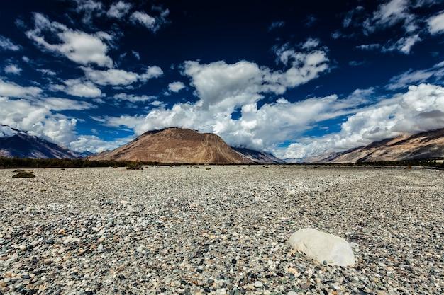 Vale nubra no himalaia ladakh índia