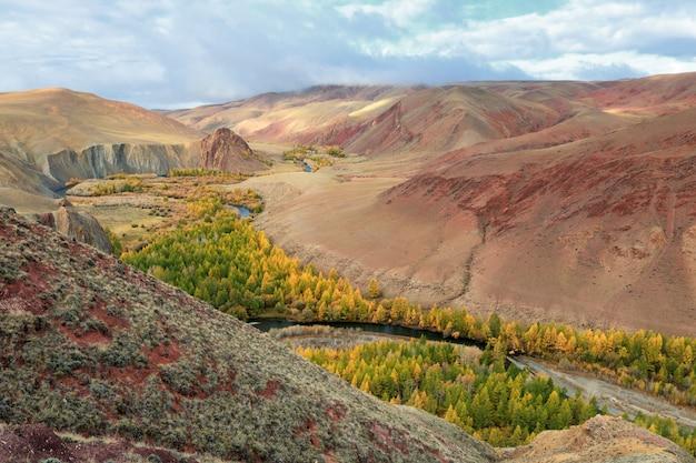 Vale vermelho, perto da aldeia de kokorya, distrito de kosh-agachsky, na república de altai, na rússia