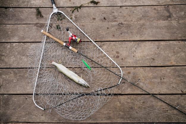 Vara de pesca e peixe de água doce na rede de pesca