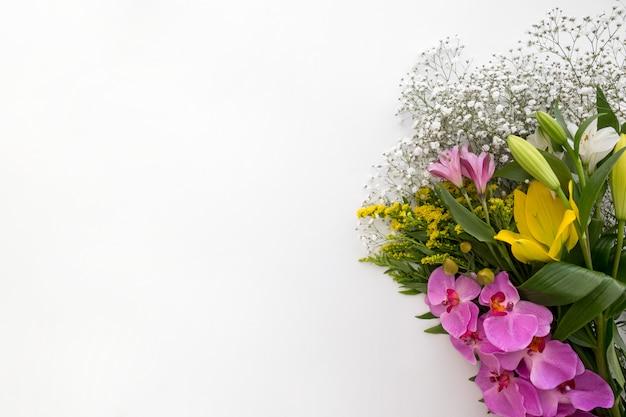 Variação de flores no fundo branco
