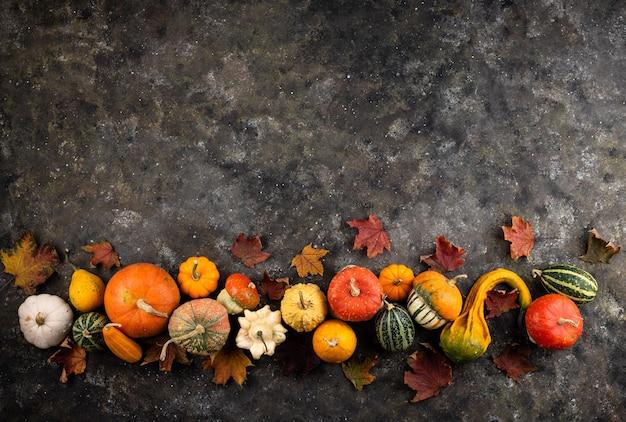 Várias abóboras decorativas e folhas secas