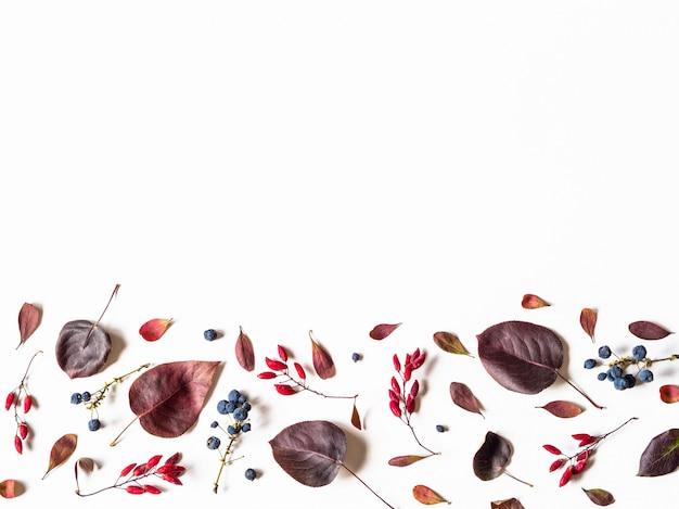 Várias bagas e folhas de árvores selvagens fronteira isolado no branco
