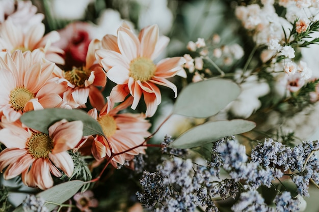 Várias flores em uma floricultura