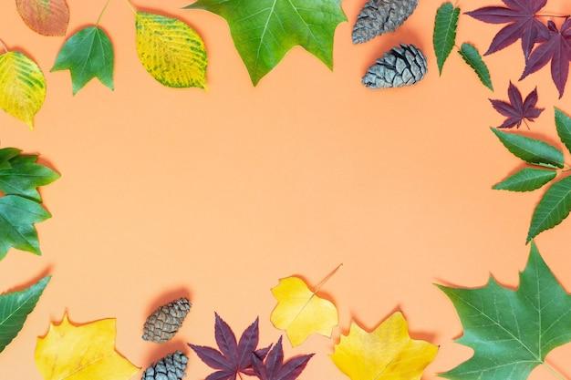 Várias folhas de outono e pinhas em um fundo laranja, vista de cima