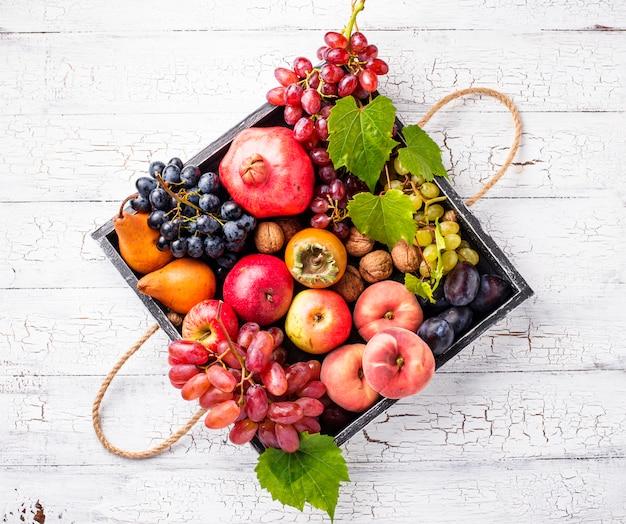 Várias frutas de outono