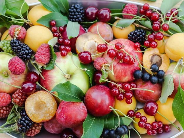 Várias frutas e bagas frescas