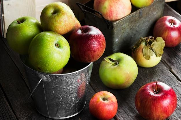 Várias maçãs maduras no balde de metal