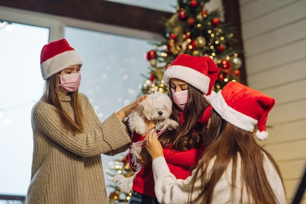 Várias meninas brincam com um cachorrinho na véspera de ano novo em casa