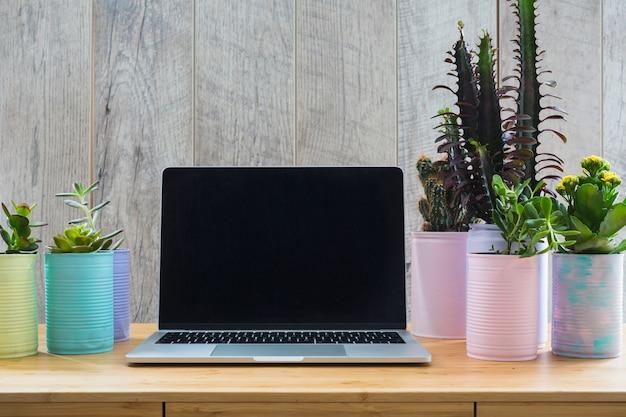 Várias plantas nas latas recicladas pintadas com um laptop aberto na mesa de madeira
