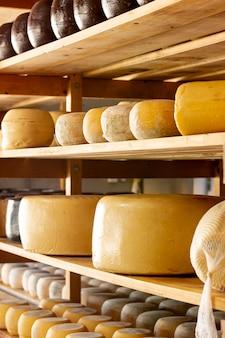 Várias rodas de queijo amadurecido