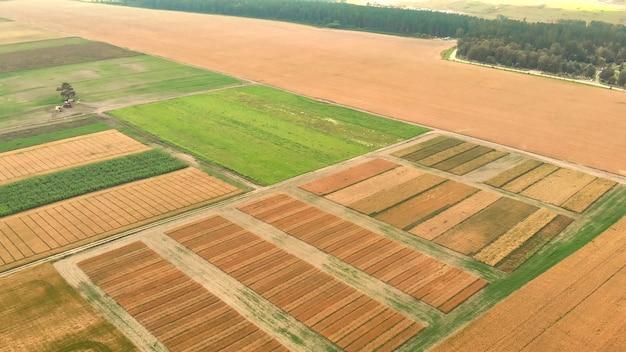 Várias seções de campo de cores verdes e marrons com estradas de terra perto da densa floresta verde