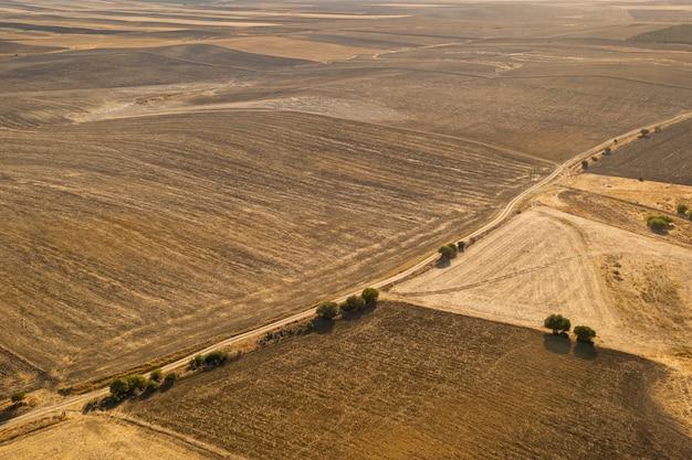 Variedade de alta vista da planície de outono tirada por drone