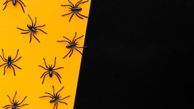 Variedade de aranhas de vista superior com espaço de cópia