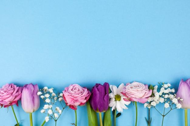 Variedade de belas flores dispostas no fundo de fundo azul
