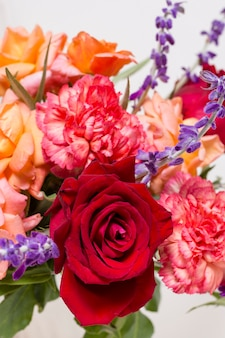 Variedade de close-up de rosas fofos