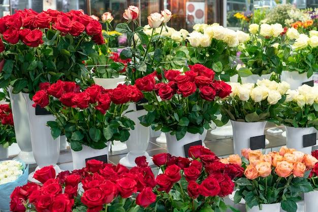 Variedade de elegantes flores vermelhas