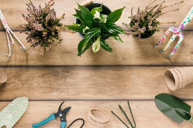 Variedade de equipamentos de jardinagem; plantas floridas; pote de turfa, organizado na mesa de madeira