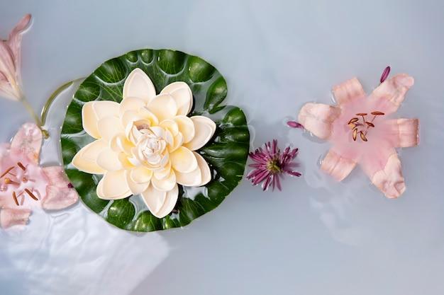 Variedade de flores de bem-estar