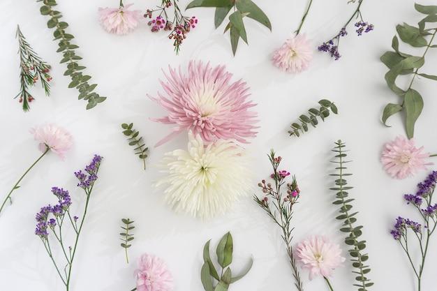 Variedade de flores decorativas no fundo branco