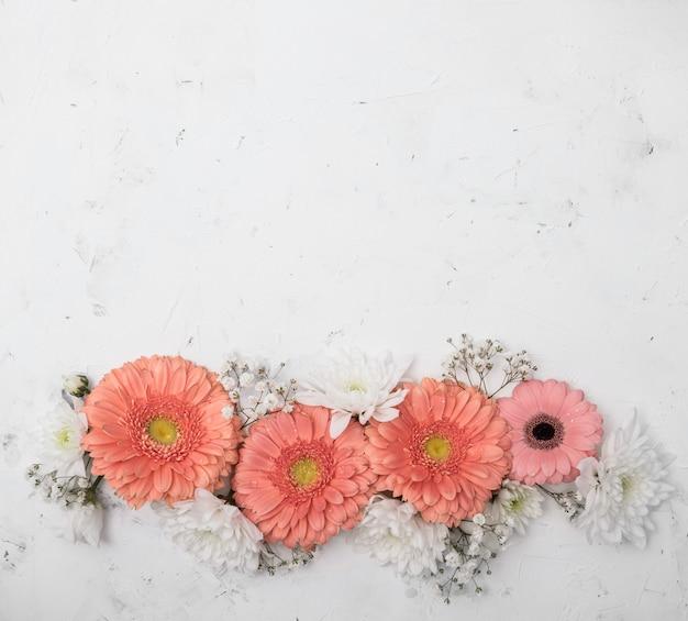 Variedade de flores do verão e espaço de cópia gerbera