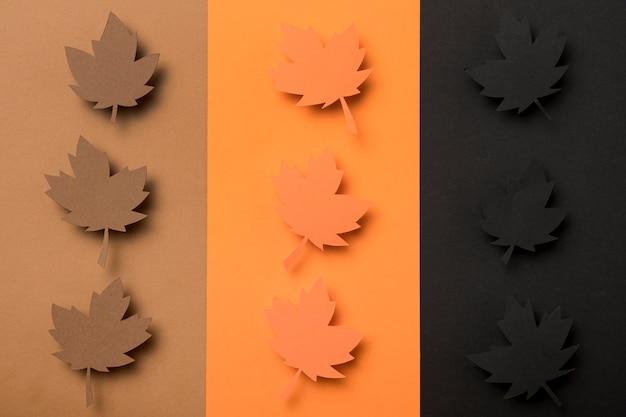 Variedade de folhas de outono de vista superior