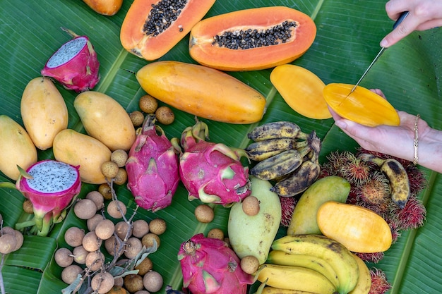 Variedade de frutas tropicais em folhas de bananeira verde e mãos de pessoas com faca. sobremesa orgânica, close-up. manga, mamão, pitahaya, banana, melancia, abacaxi e mãos