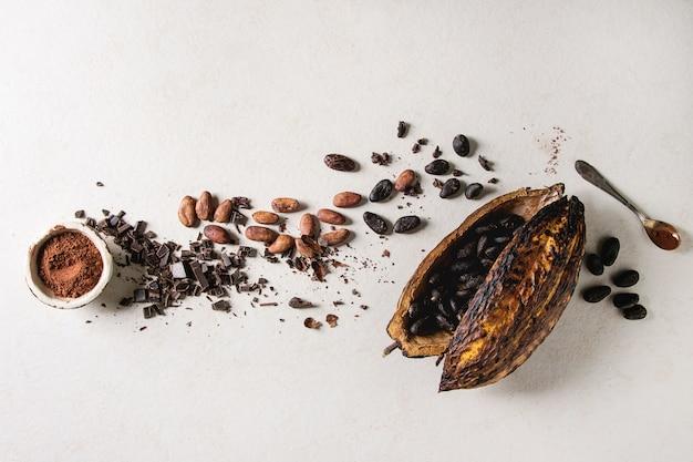 Variedade de grãos de cacau