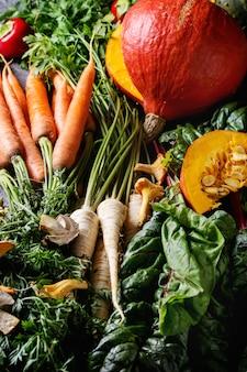 Variedade de legumes colheita de outono