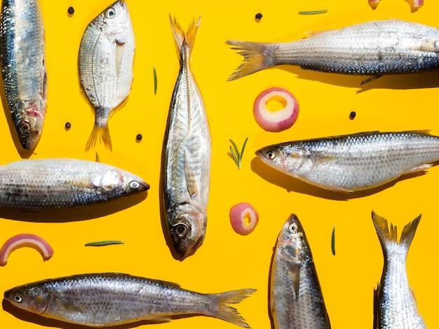 Variedade de peixes frescos prontos para serem cozinhados