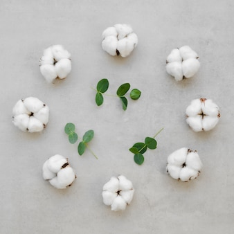 Variedade de vista superior com flores de algodão