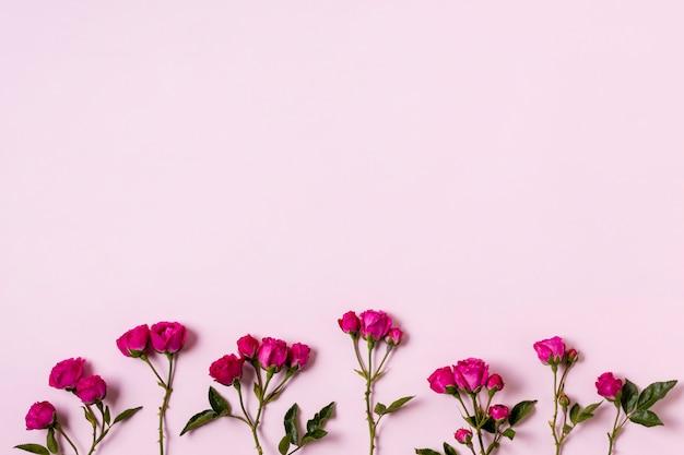 Variedade de vista superior de rosas com espaço de cópia