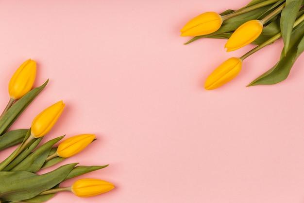 Variedade de vista superior de tulipas amarelas com espaço de cópia
