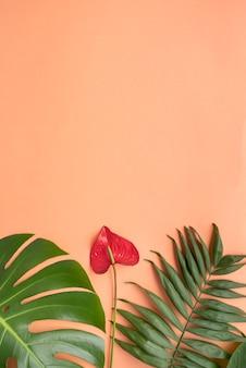 Variedade mínima de plantas tropicais