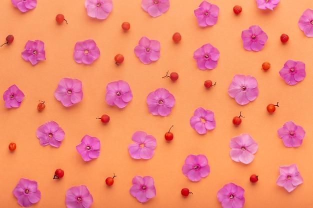 Variedade plana de flores