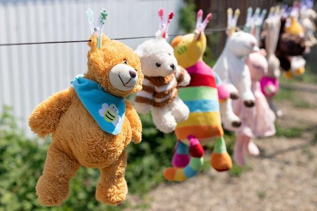 Vários brinquedos de pelúcia pendurados no varal